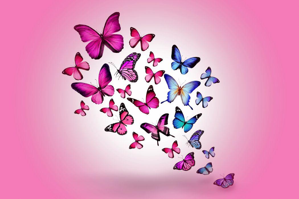 Insects Butterflies Animals butterfly bokeh d wallpaper