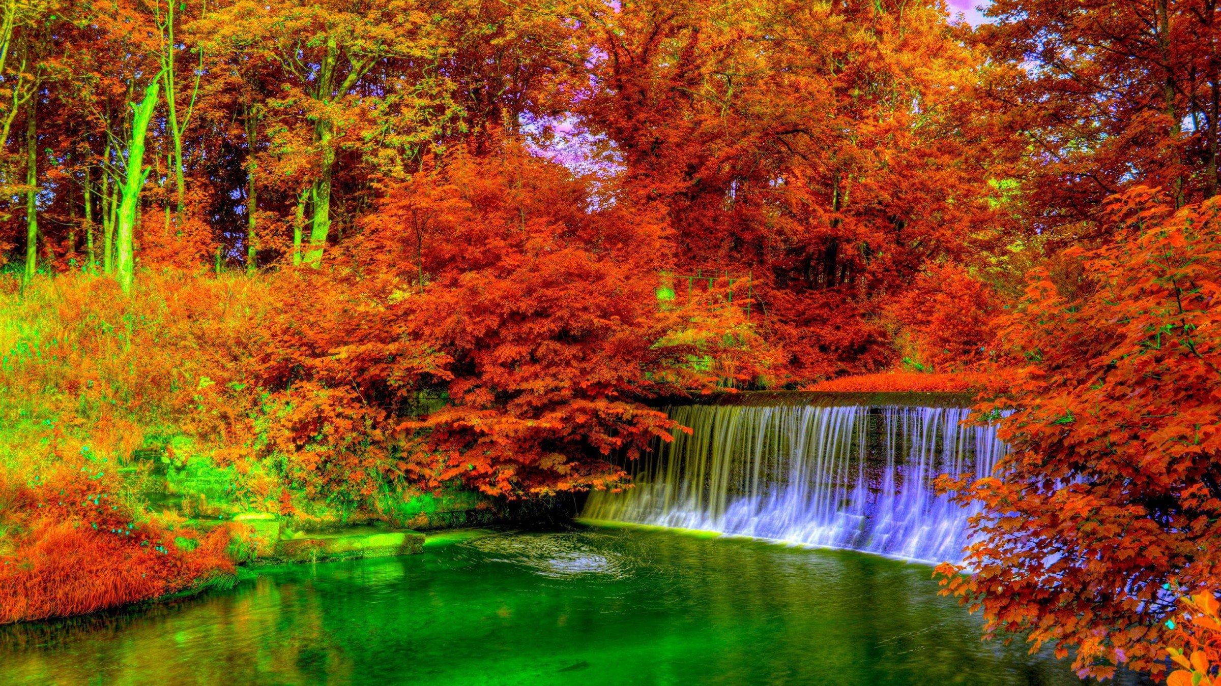 landscape nature tree litsva - photo #9