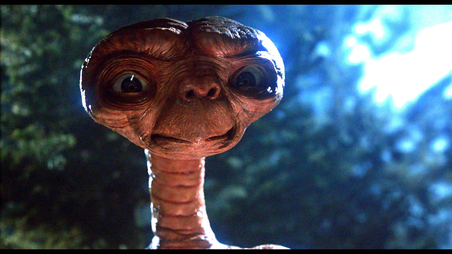 et movie alien wwwpixsharkcom images galleries with