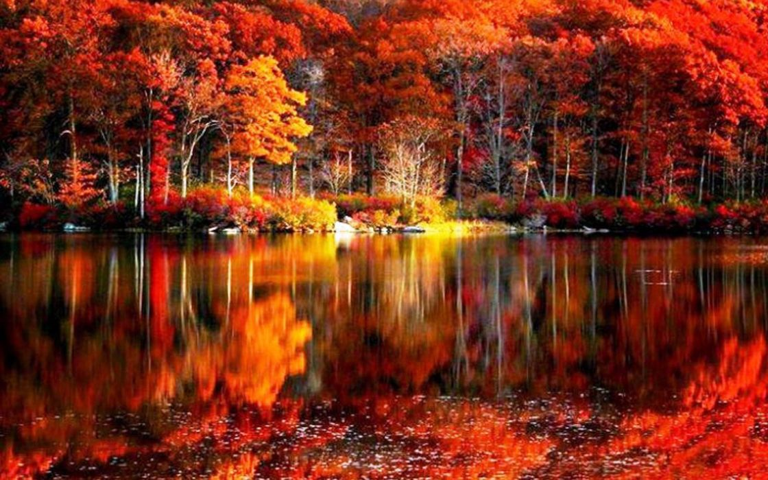 fall foliage river autumn red lake reflections shore beautiful serenity trees calmness wallpaper