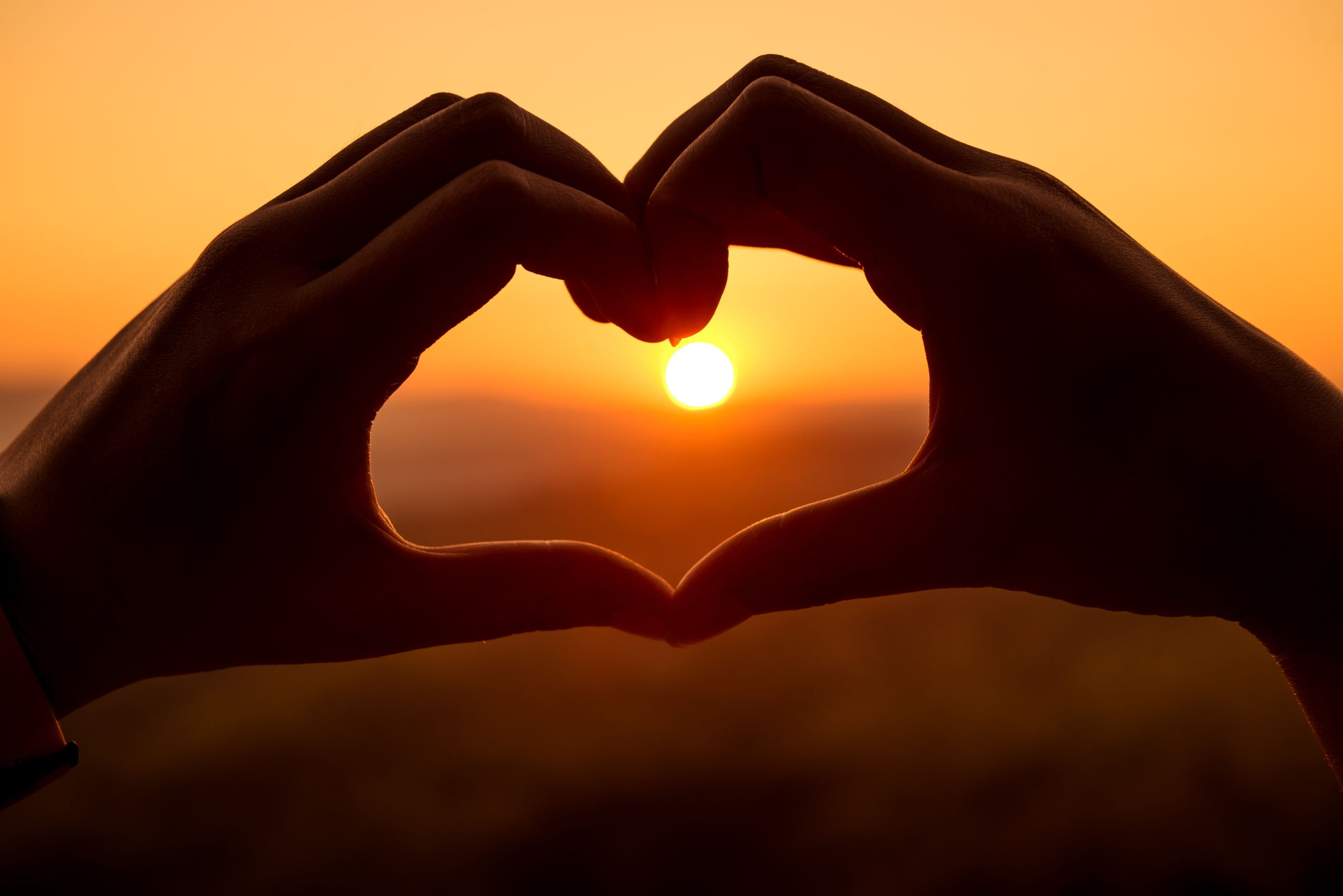 Heart Love Sunset Hands Nature Splendor Wallpaper