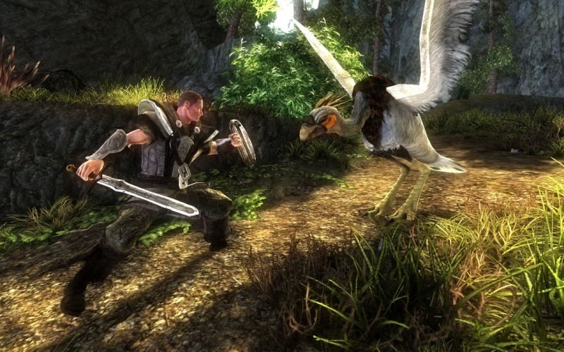RISEN rpg medieval fantasy action fighting (3) wallpaper