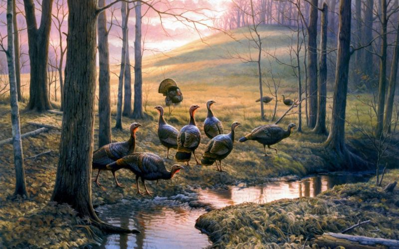 autumn leaves painting forest creek turkeys hill wallpaper