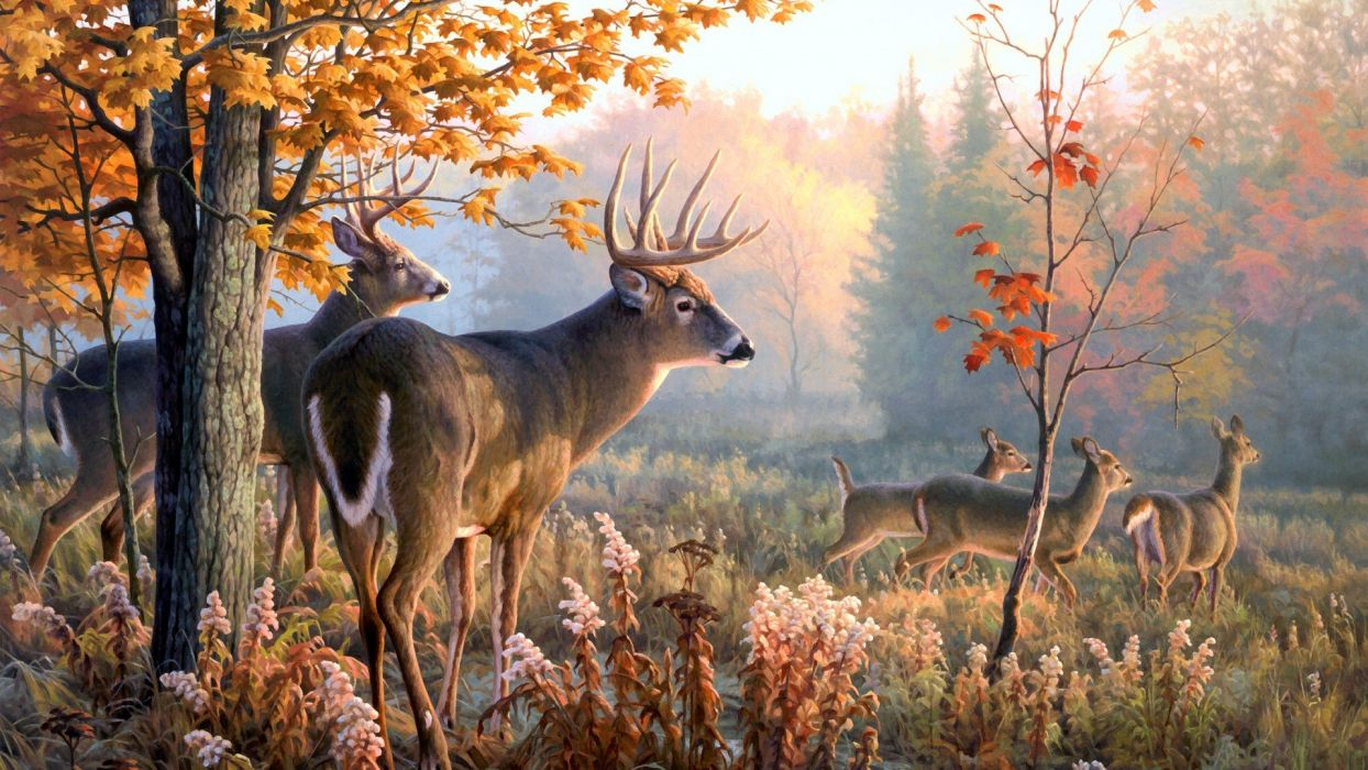 throw-caution forest nature paiting color wallpaper
