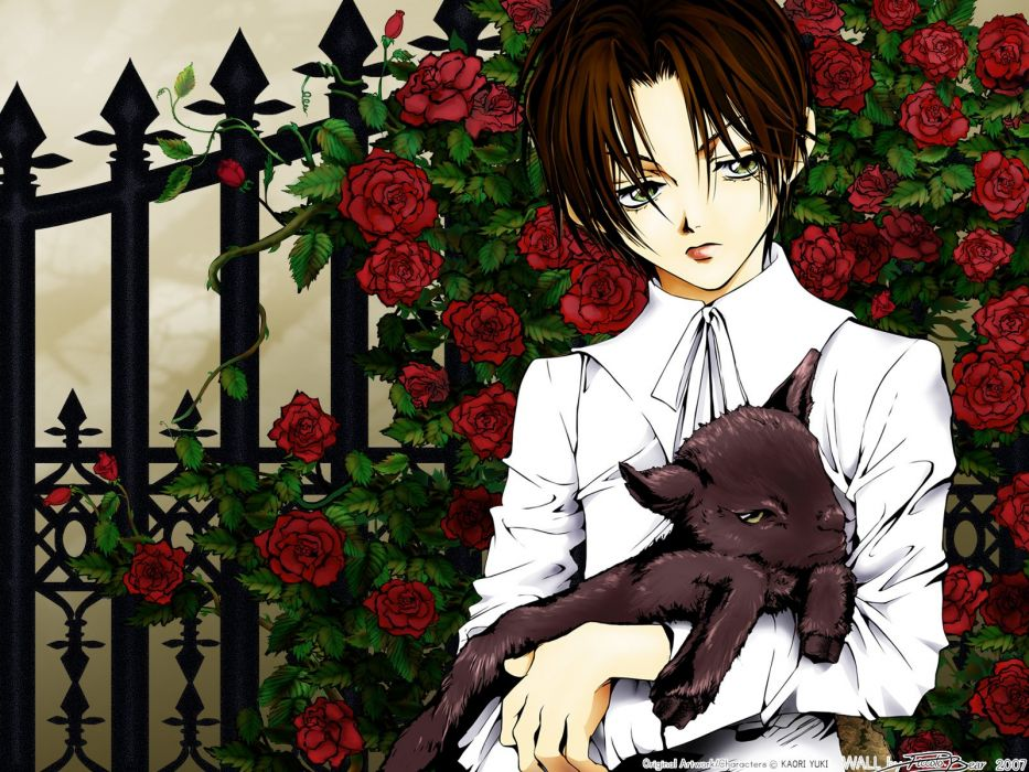 Count Cain Series rose Cain Hargreaves Character wallpaper
