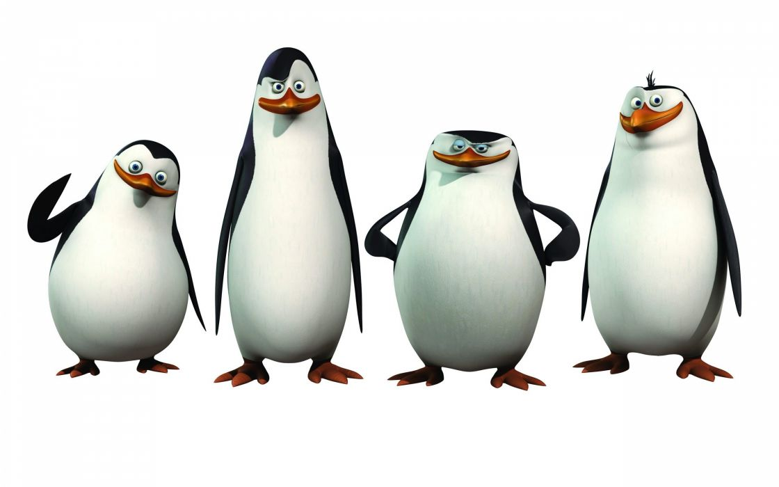 Penguins Of Madagascar Animation Comedy Adventure Family Penguin Cartoon Wallpaper 2560x1600 477327 Wallpaperup