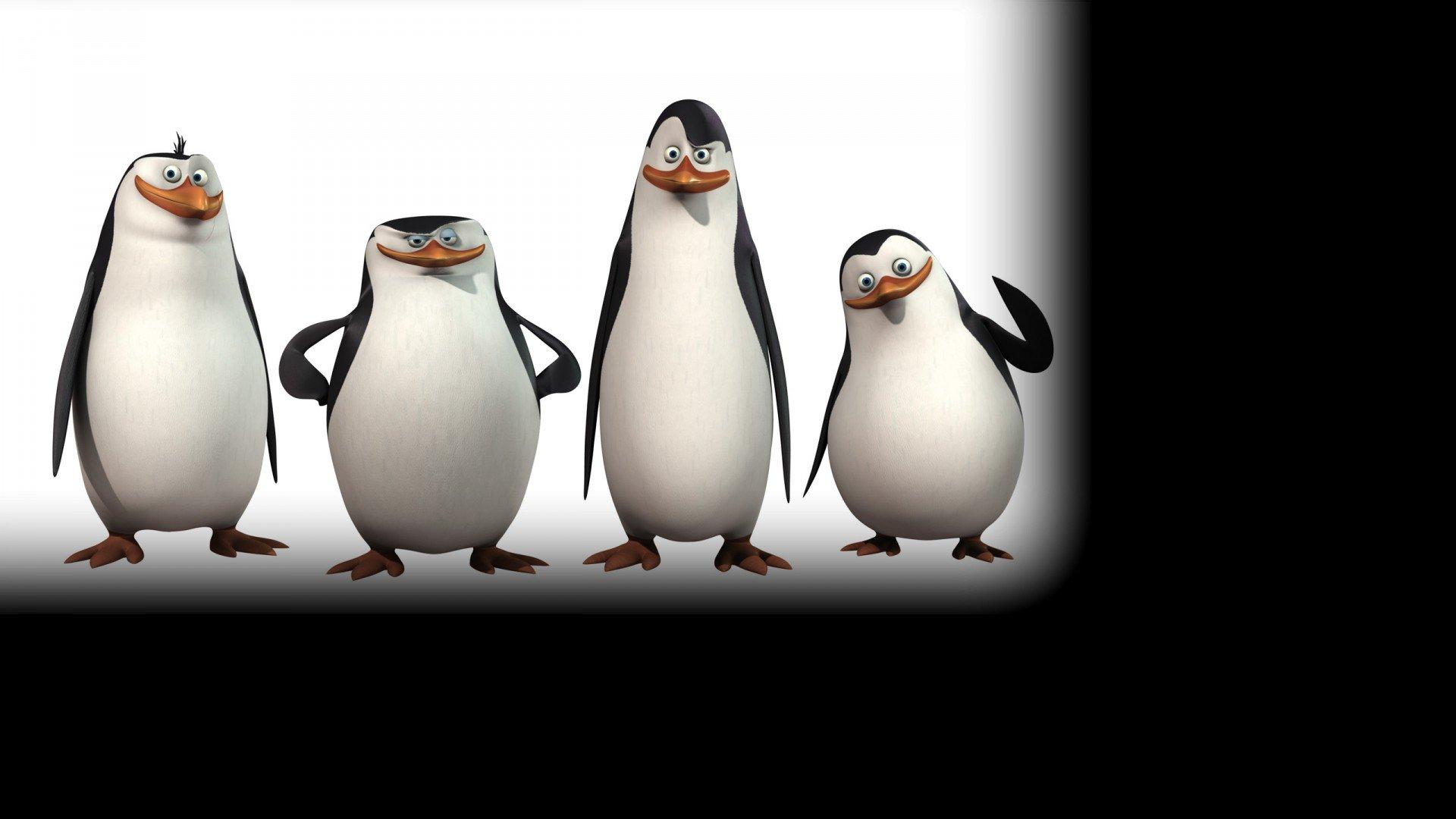 демотиваторы с пингвинами из мадагаскара каждый
