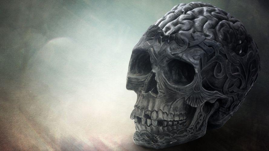 brain skull-1920x1080 wallpaper