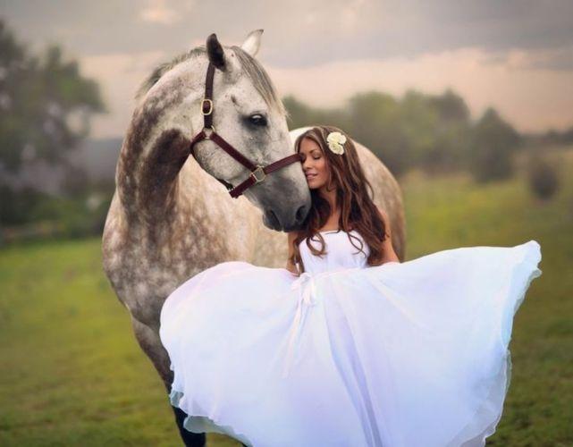 white horse friendship pure feeling bride princess wedding wallpaper
