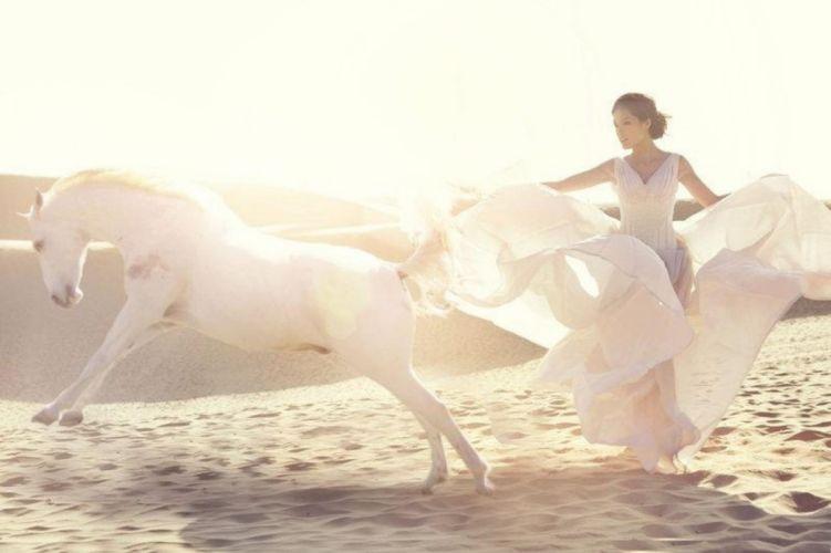 dance sunny day sunny horse white horse white dress sand desert beauty friends beautiful lady hot friendship sunshine emotions animal love feeling wallpaper