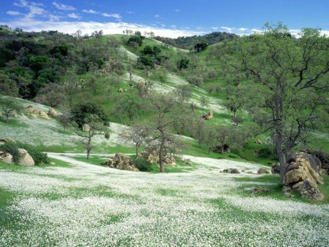 Nature wild beautiful landscape wallpaper