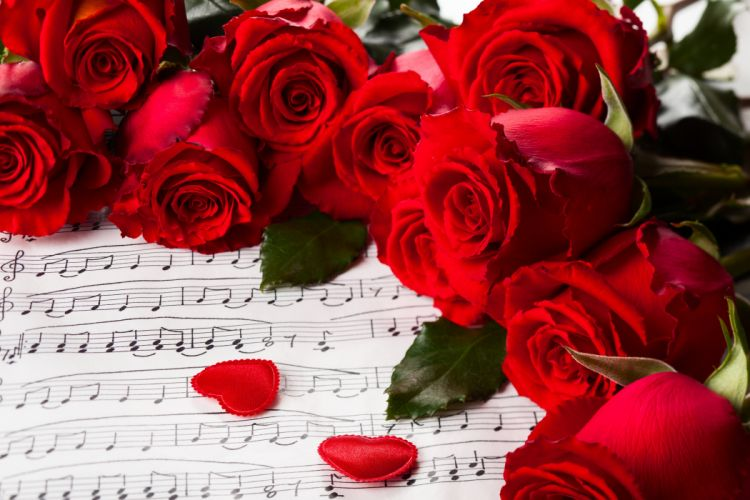 hearts valentines day red roses nature for you roses music rose with love flowers wallpaper