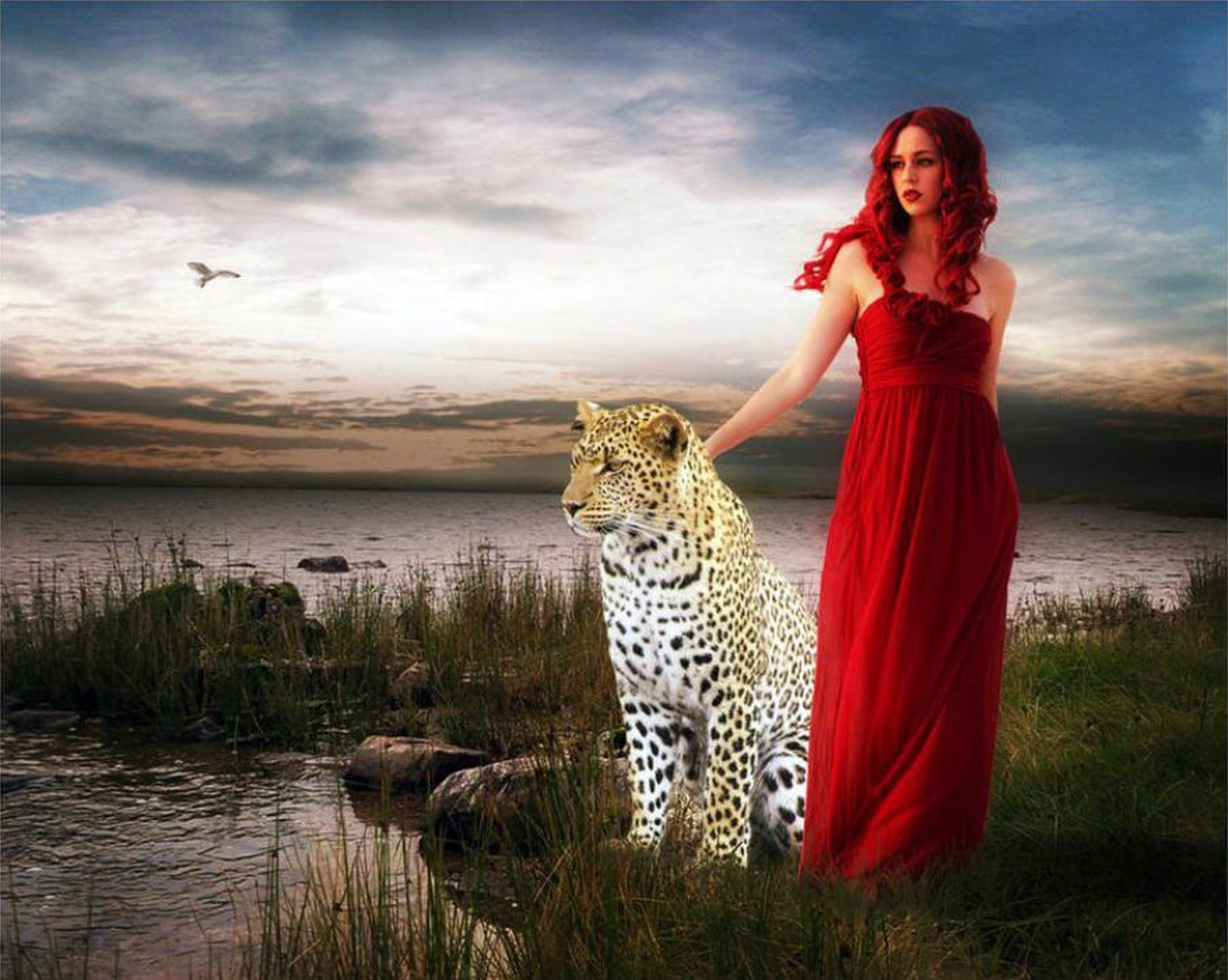red tiger fantasy leopard wild lady jessica wallpaper