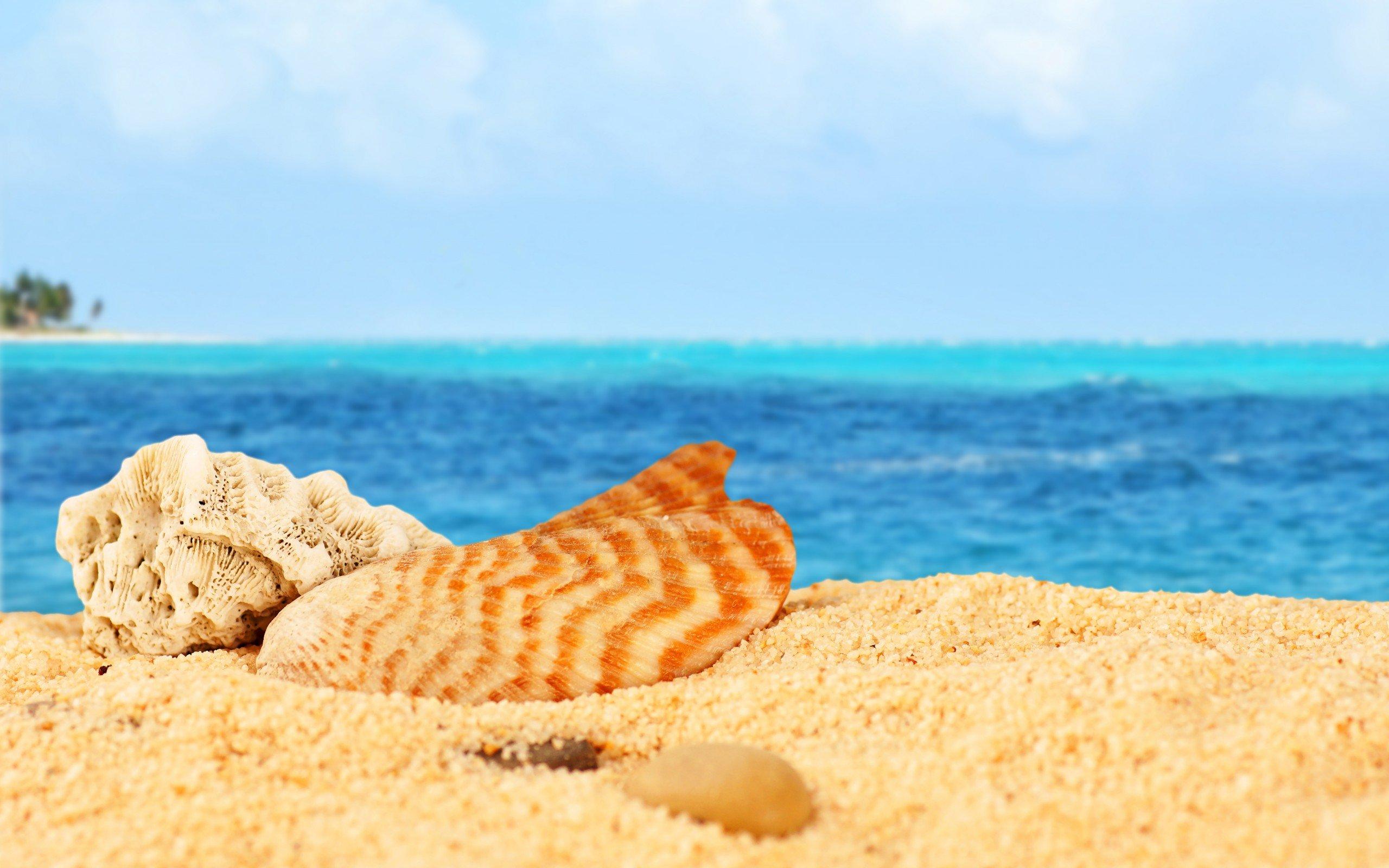 Рисунки пляж