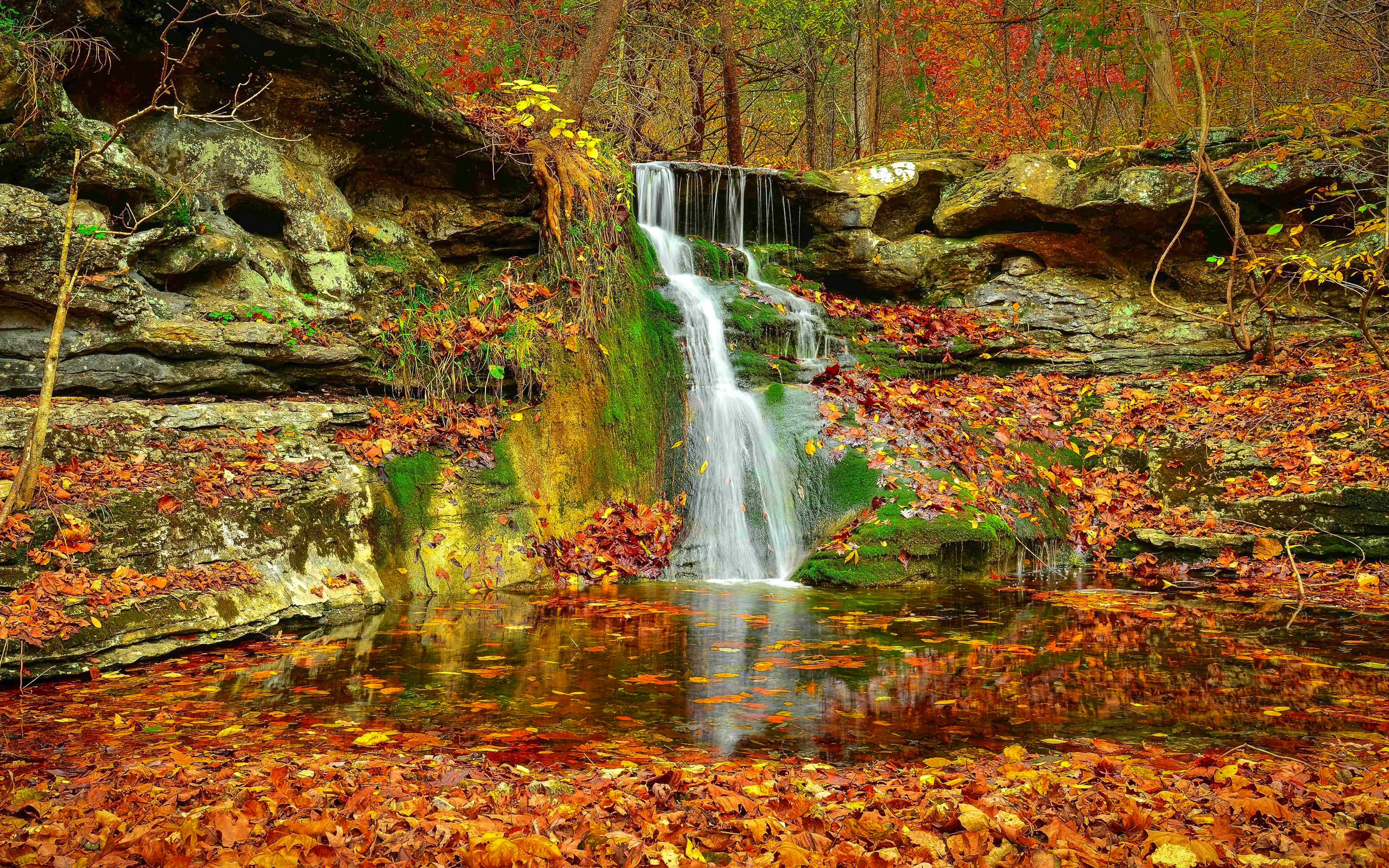 Waterfall autumn lovely stream fall nature leaves beautiful rocks serenity forest colorful - 5120x3200 resolution ...