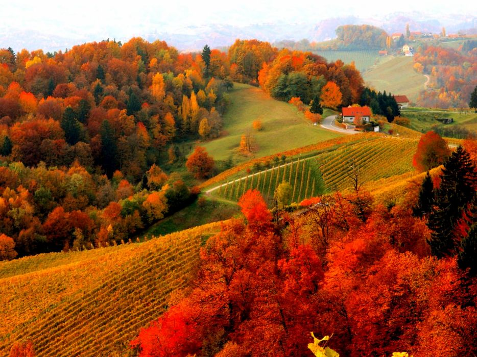 Houses Foliage Fall Autumn Mountain View Lovely Hills Beautiful Trees Village Peaceful Wallpaper