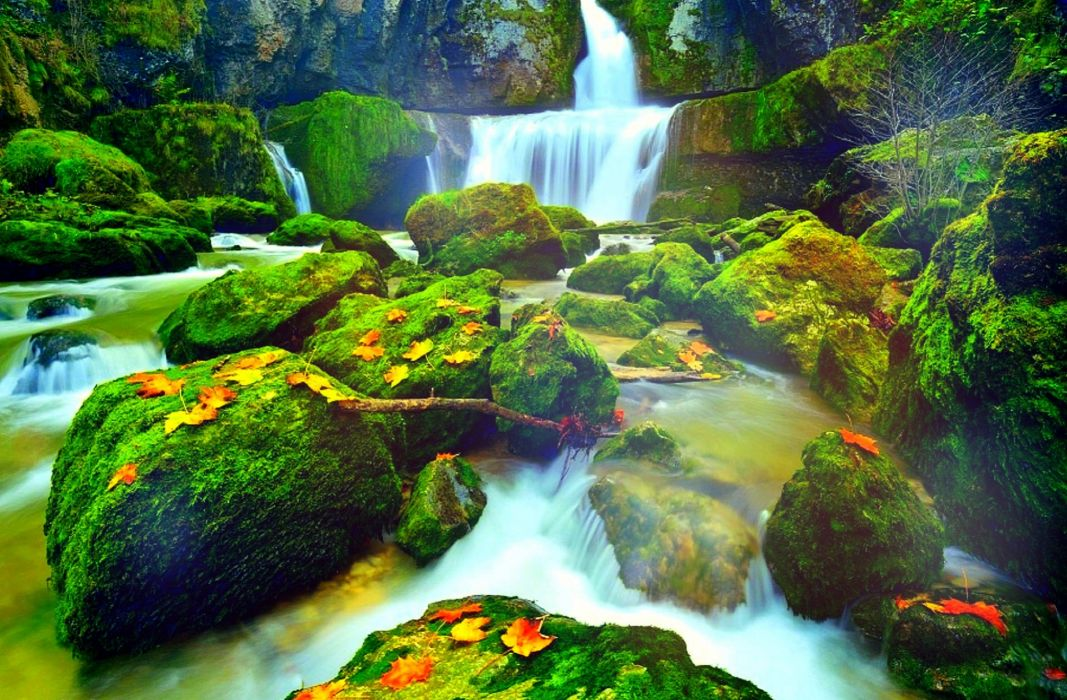 leaves East of France beautiful colors photography stunning autumn rivers creative pre-made landscapes fall attractions in dreams love four seasons nature La Billaude falls waterfalls places wallpaper