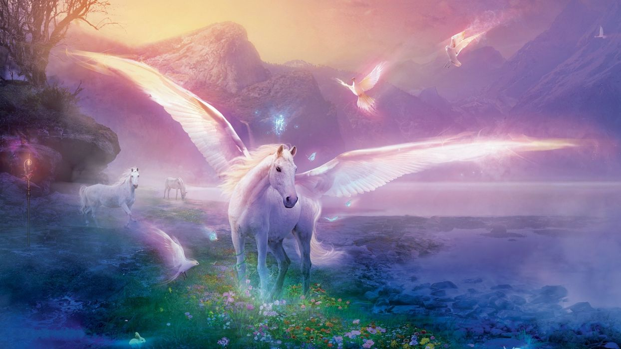 PEGASUS - birds horses fantasy wallpaper