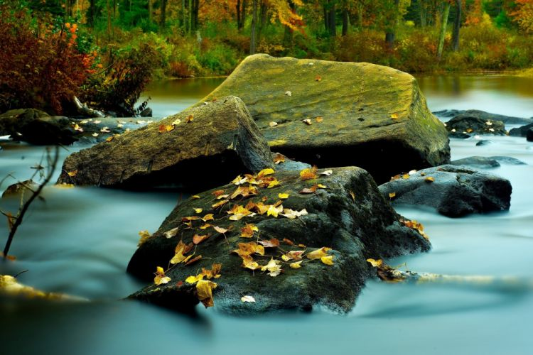 landscape stone autumn river leaves United States New Hampshire wallpaper