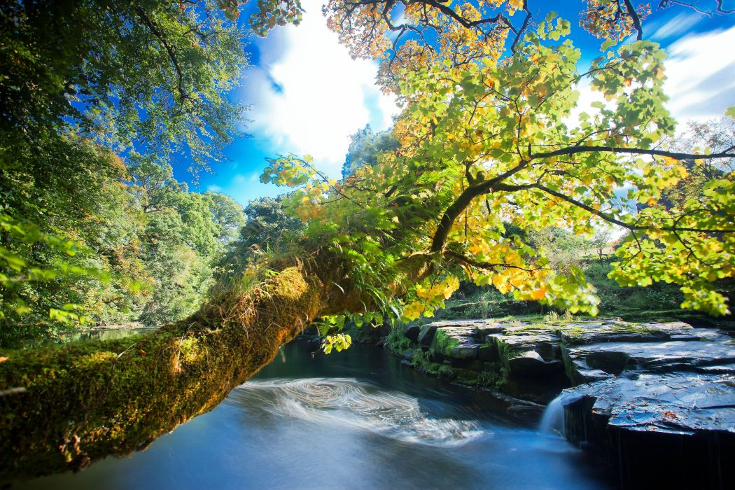 river rocks trees waterfalls autumn nature wallpaper