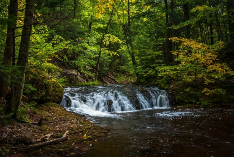 forest river trees waterfall nature autumn wallpaper