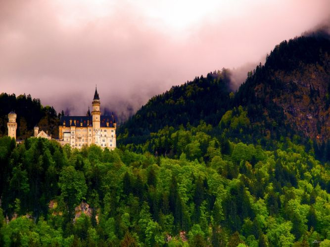 Neuschwanstein Castle Bavaria Germany forest castle landscape wallpaper