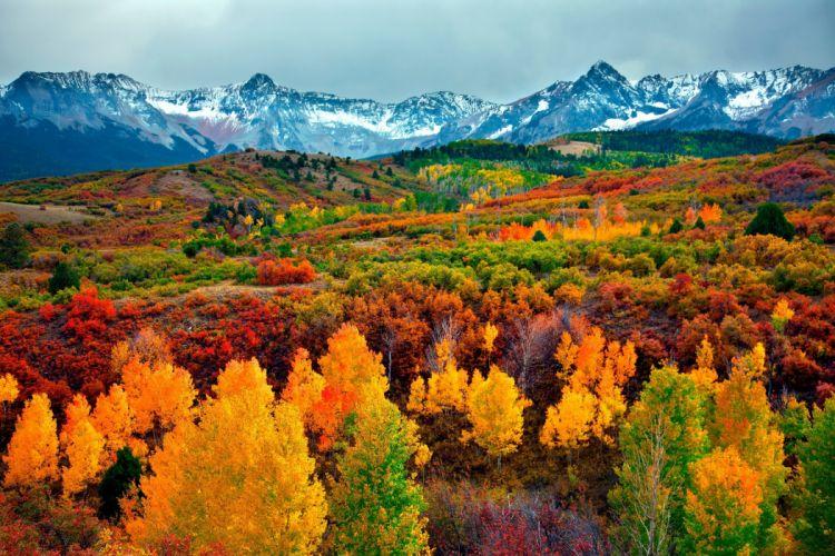 autumn landscape mountains trees nature wallpaper