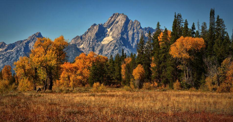 mountain autumn landscape Mount Moran wallpaper