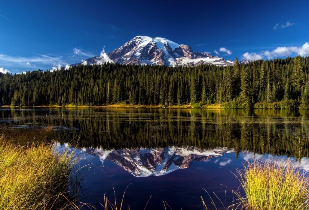 forest landscape mountain Mount Rainier National Park volcano reflection lake wallpaper