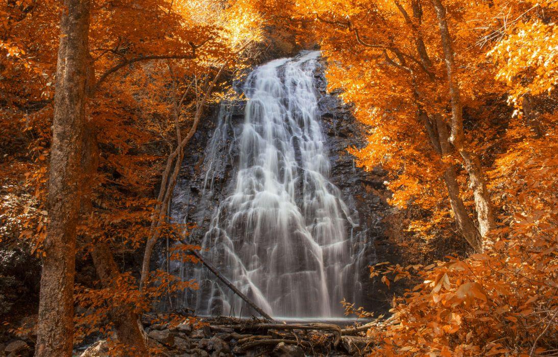 waterfall cascade forest autumn wallpaper