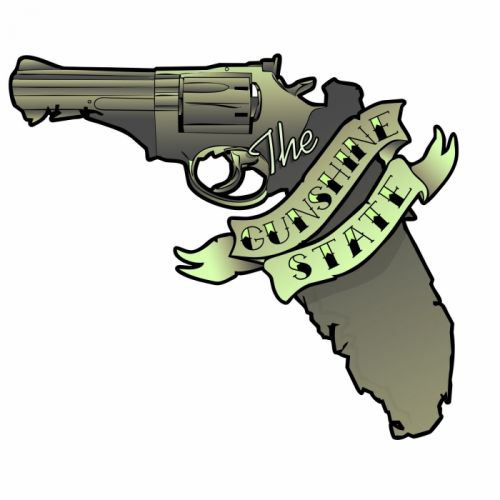 GUN CONTROL weapon politics anarchy protest political weapons guns florida wallpaper
