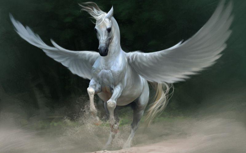 Art Fantasy Pegasus horse white wings dust sand wallpaper