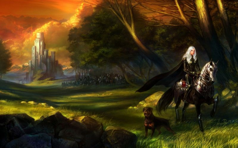 art castle girl rider the horse dog army grass rocks forest wallpaper