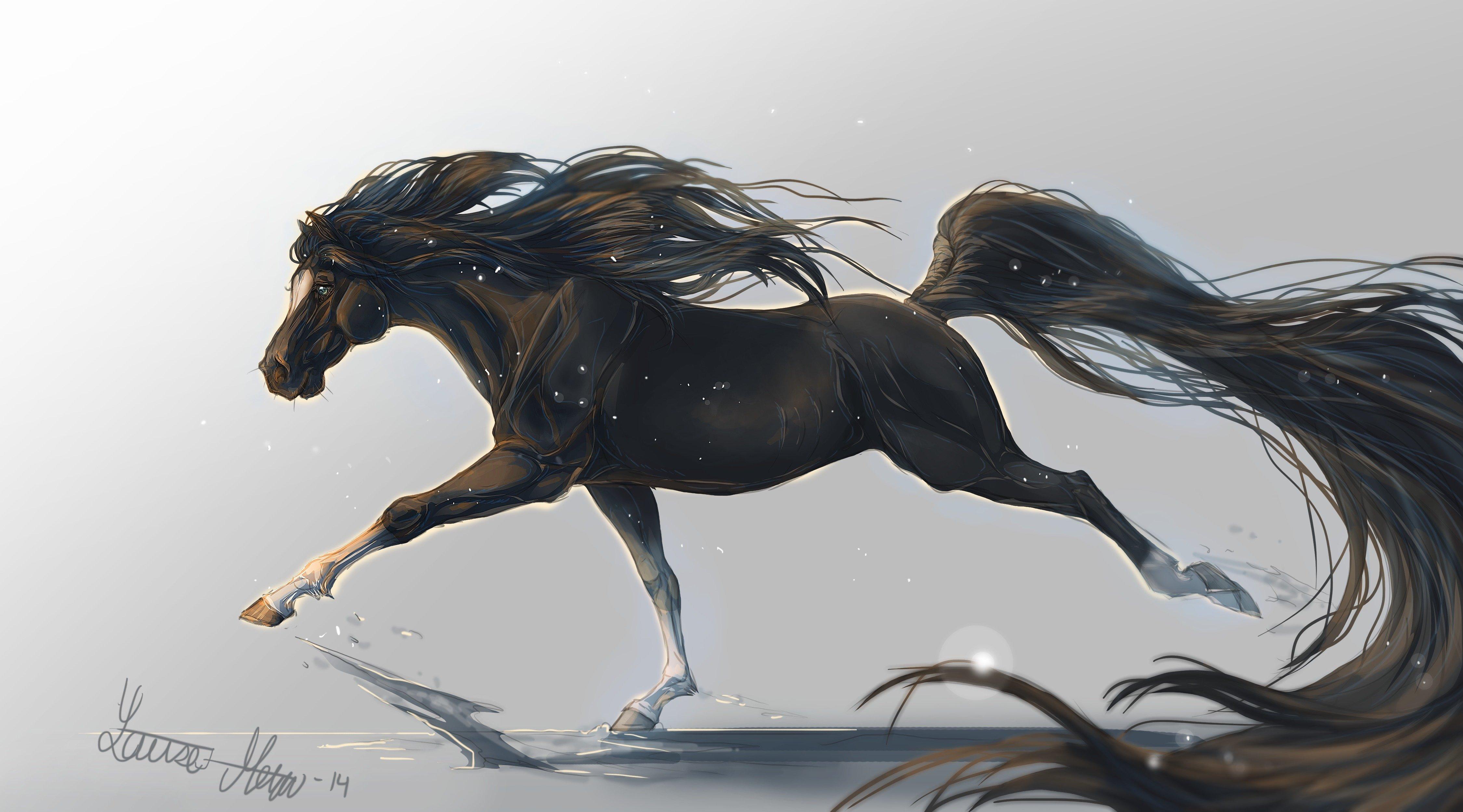 horse horse art tail animal griva hooves wallpaper 4500x2500 wallpaperup