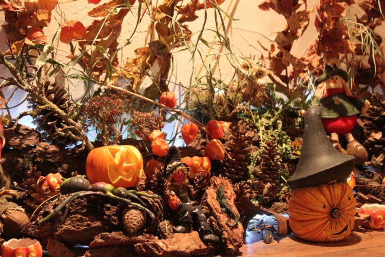 halloween citrouille pumpkin wallpaper
