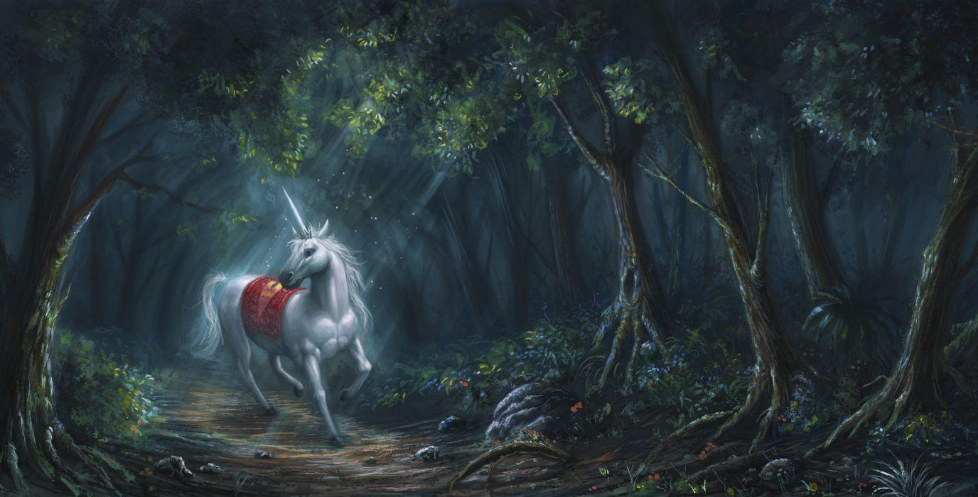 Fantasy Horse Forest Horn Art Unicorn White Wallpaper 4641x2362 489753 Wallpaperup