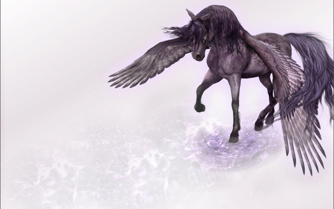 horse wings Pegasus pace minimalism Rendering wallpaper
