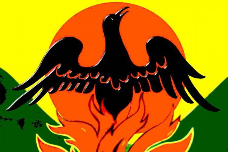 SOULFLY groove metal thrash heavy death fantasy bird psychedelic wallpaper