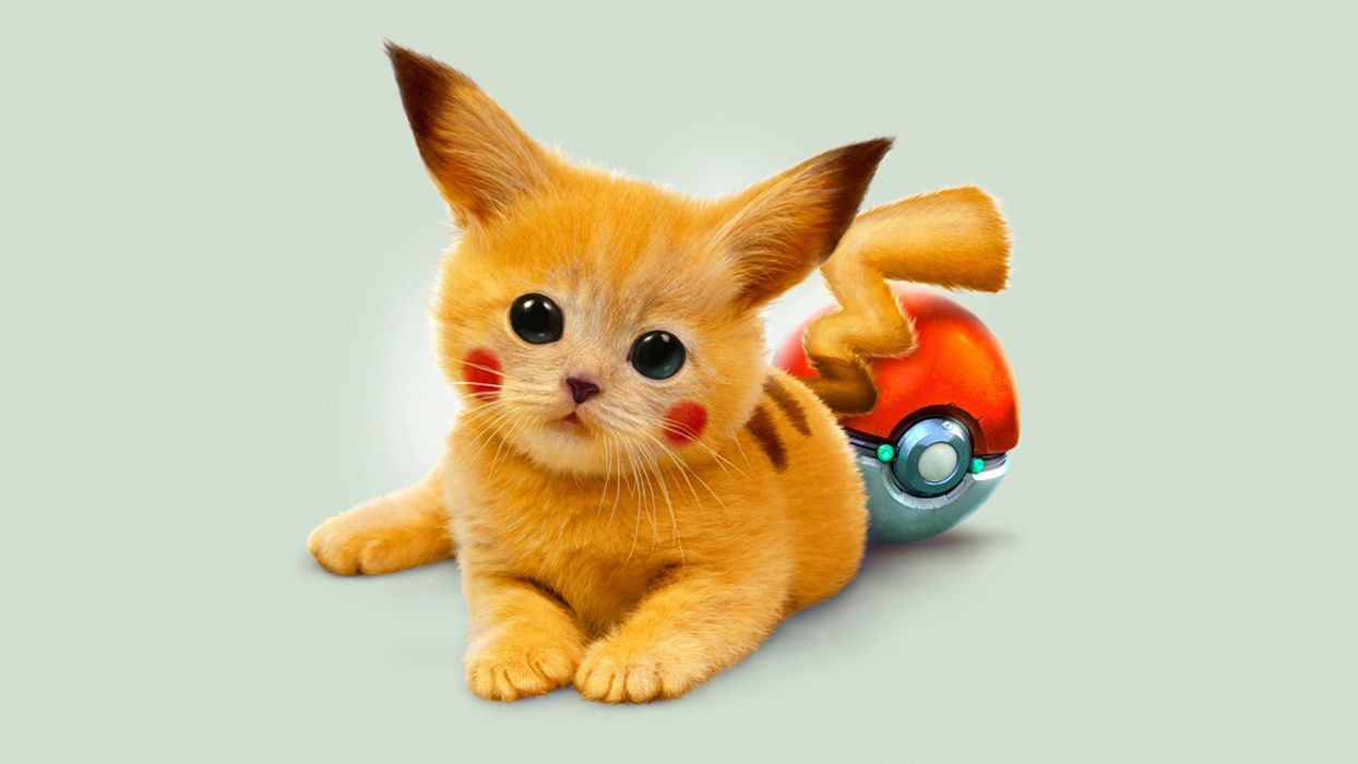kitten red Pokemon Pikachu eyes Art wallpaper