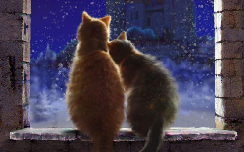 Art Cats pair love snow Winter window sill castle night Snowflakes wallpaper