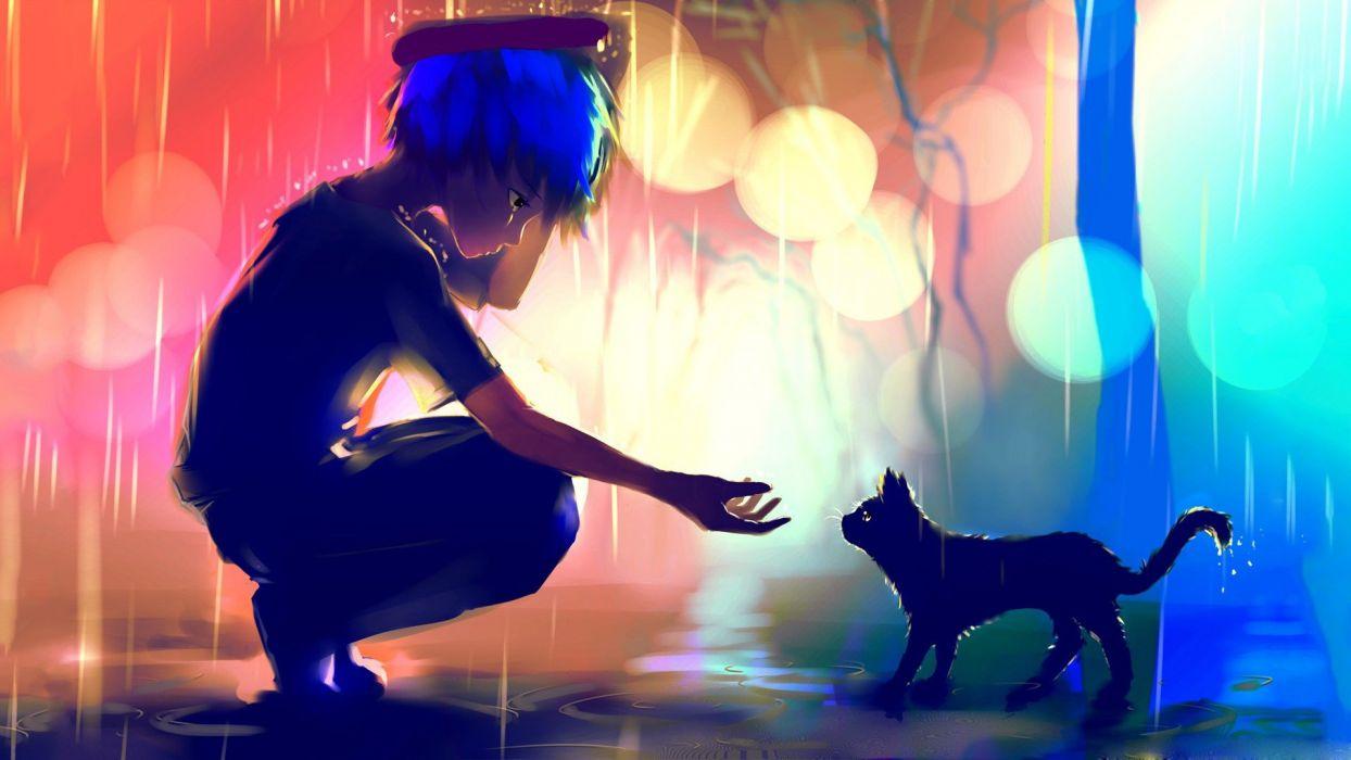 rain falling-bokeh cat cute blue red light wallpaper