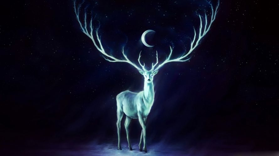 moon painting stag dark blue wallpaper