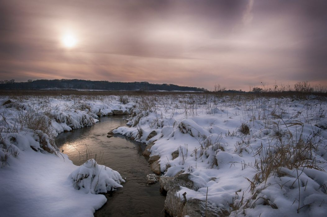 forest snow field river winter wallpaper