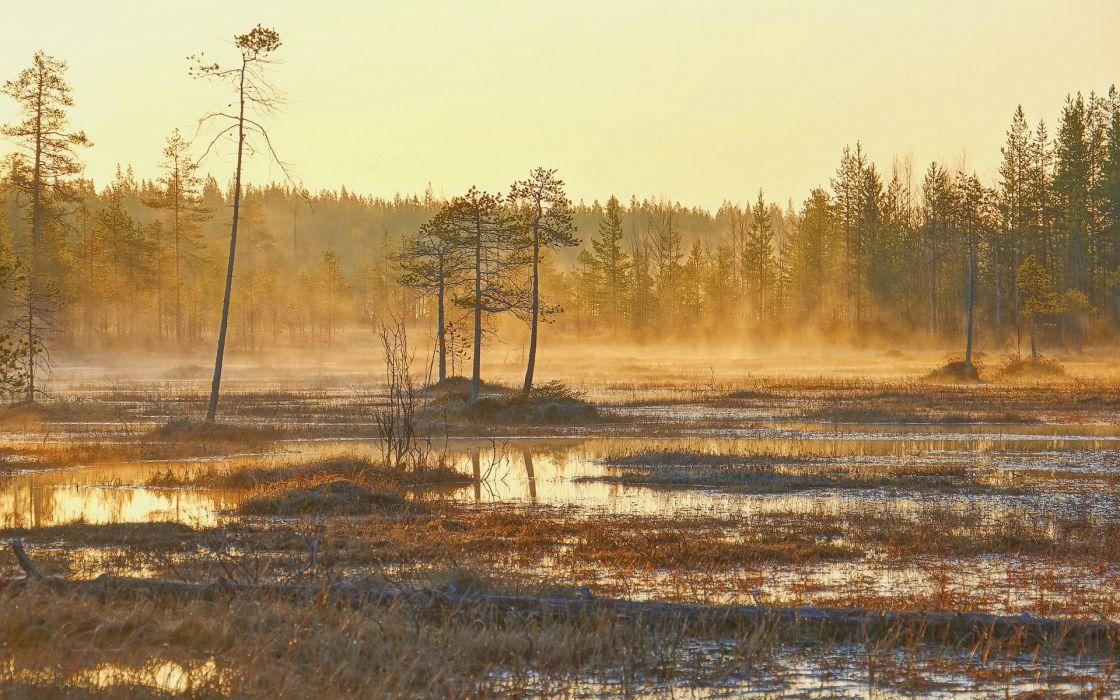 nature landscape morning lake autumn fog mist wallpaper