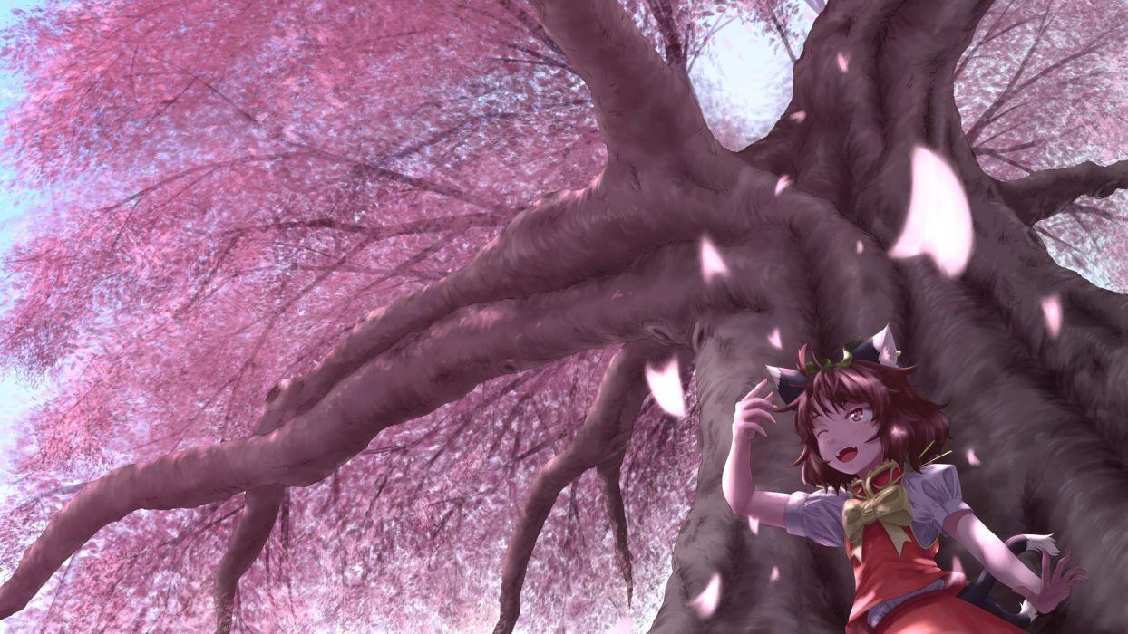 sakura tree pink petals girl kitty smile wallpaper