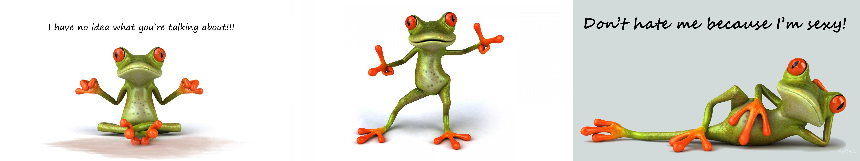 humour - Frog wallpaper