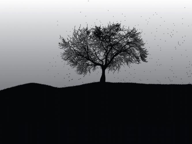 abstract art design tree wallpaper