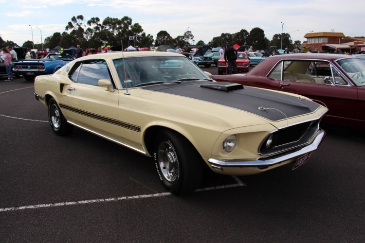 1969 428 classic cobra jet mach mach 1 muscle Mustang super cars usa pony muscle coupe wallpaper