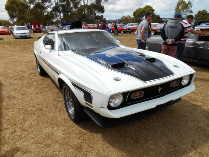 1972 428 classic cobra jet mach mach 1 muscle Mustang super cars usa pony muscle coupe wallpaper