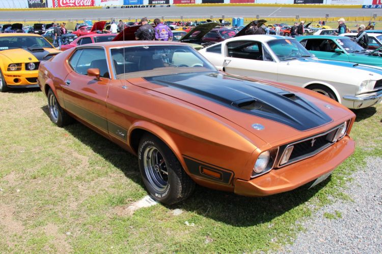 1973 428 classic cobra jet mach mach 1 muscle Mustang super cars usa pony muscle coupe wallpaper